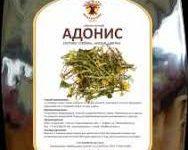 Адонис весенний | Adonidis vernalis