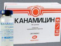 Канамицин   Kanamycin