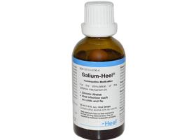 Галиум-Хель | Galium-Heel